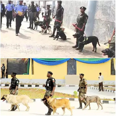 Nigeria Police Force Spends N600 Million On Procurement Of Dogs