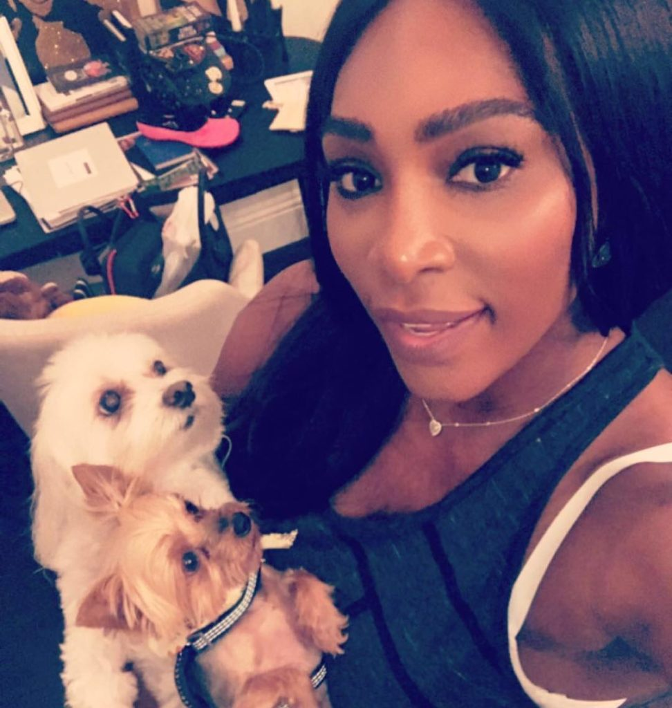 Serena Williams shares Cute and Adorable Photo of her two cutie puppies