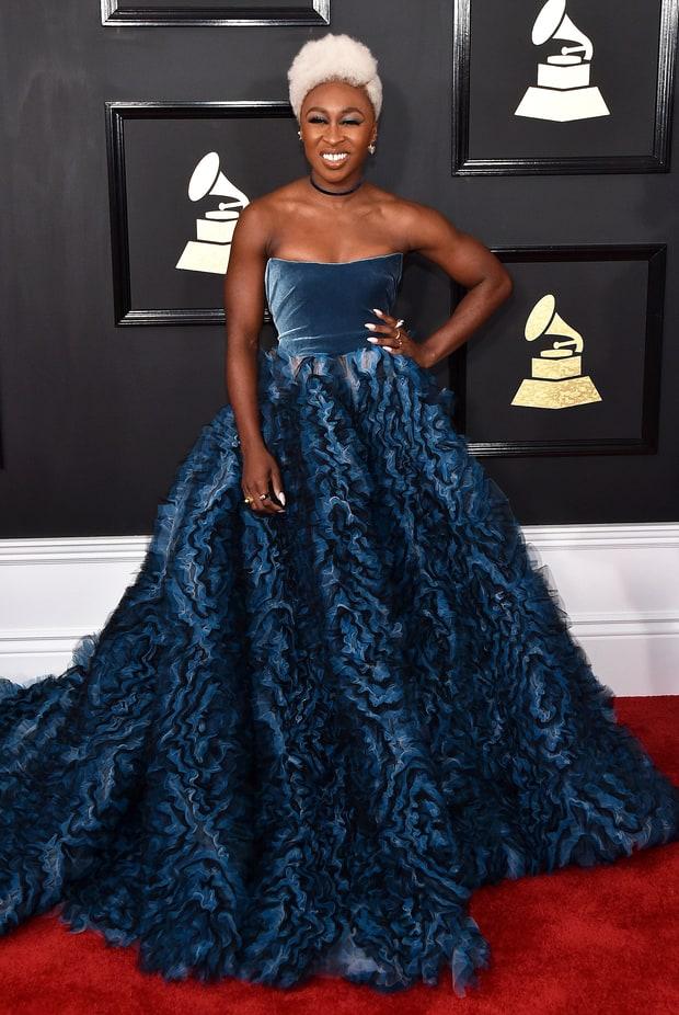 The Grammy Awards 2017 Red Carpet Photos