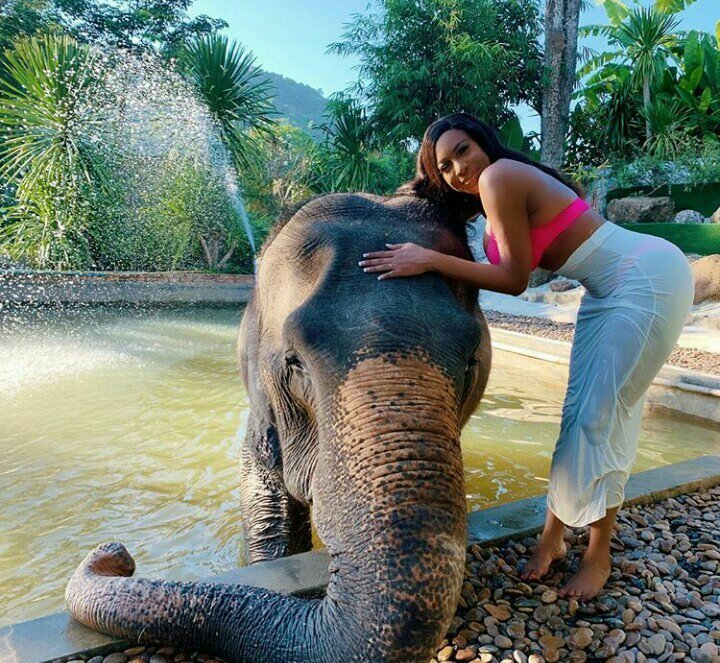 Nollywood Actress, Chika Ike Rocks Pink Bikini, Pictured With An Elephant At Pool Side