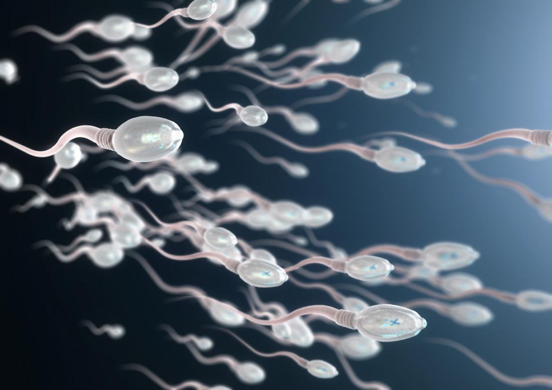 3d image of sperm cells