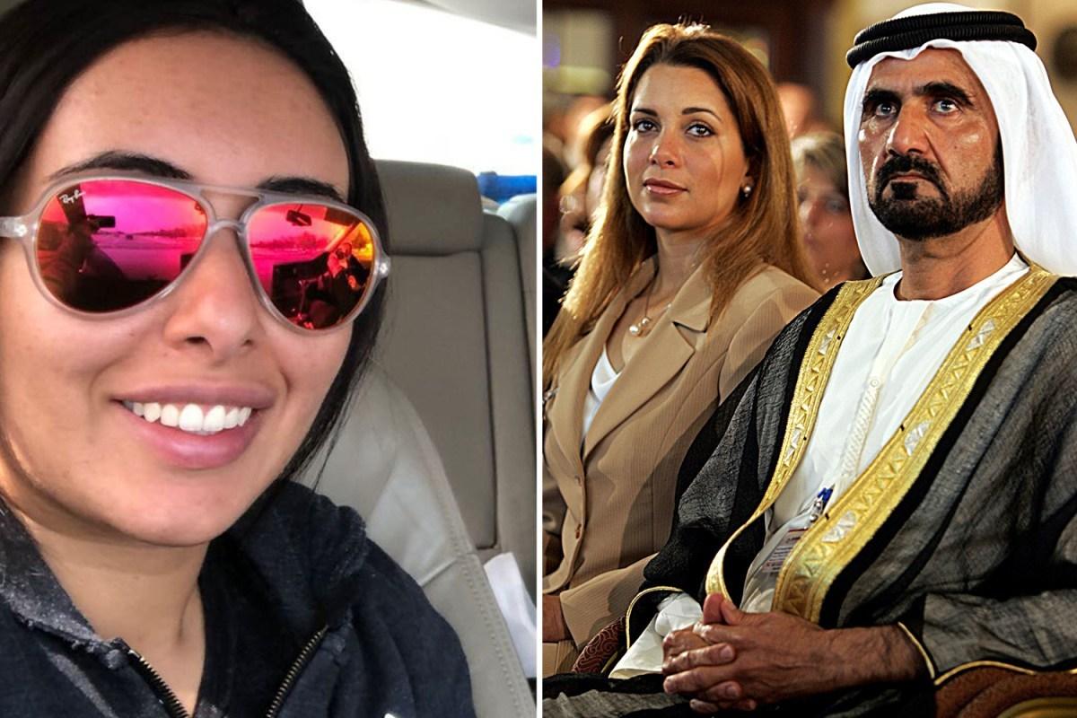 Dubai leader's on the run wife Princess Haya asked to help free