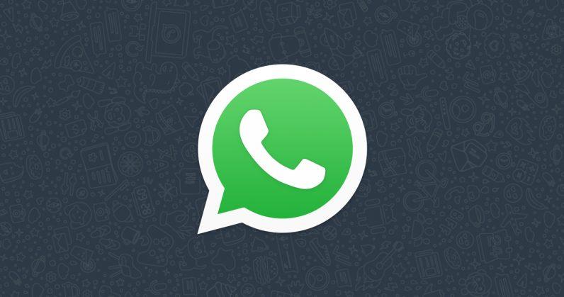 WhatsApp hed
