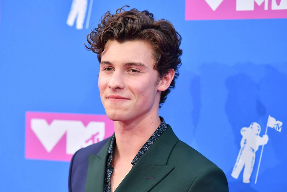 Singer Shawn Mendes Pleads After Racially-Driven Tweets