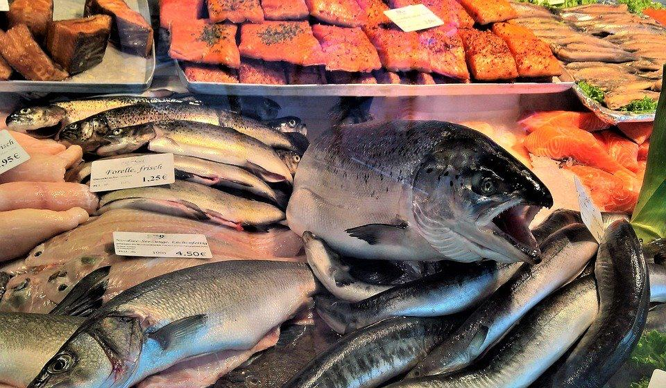 How To Start A Fish Business [Complete Guide]
