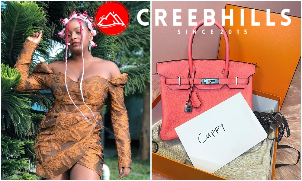 DJ Cuppy receives N9.6m Birkin Bag from her lover ahead of their second date (Photo)