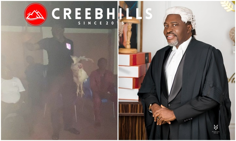 Actor Kanayo O. Kanayo celebrates being the first lawyer from his community (Video)