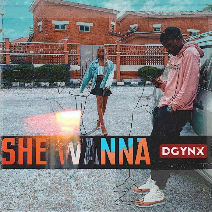 Music: Dgynx - She Wanna
