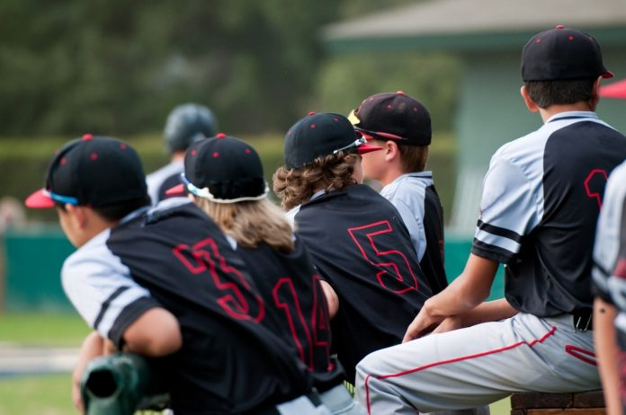 Little League Baseball Teams: Divisions and Leagues