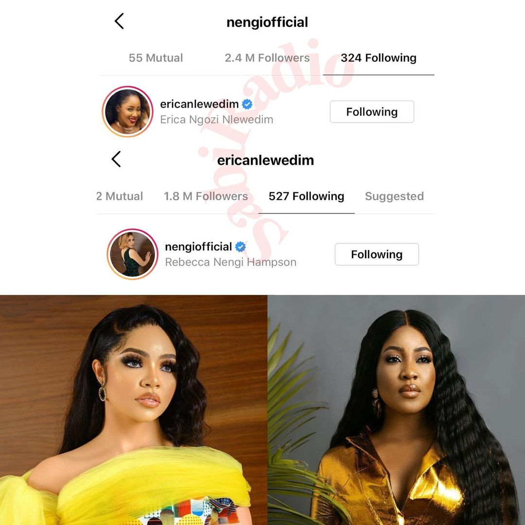 BBNaija's two biggest rival Nengi and Erica finally follow each other on IG (Screenshot)